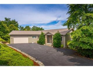 165 Kawani Lane, Brevard, NC 28712 (#3274106) :: Exit Realty Vistas