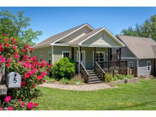 5 Hi Alta Avenue, Asheville, NC 28806 (#3275897) :: Exit Realty Vistas