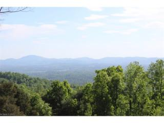 707 Overlook Drive, Flat Rock, NC 28731 (#3275948) :: Caulder Realty and Land Co.