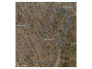 0 Bear Ridge Road, Tuckasegee, NC 28723 (#3276596) :: Exit Realty Vistas