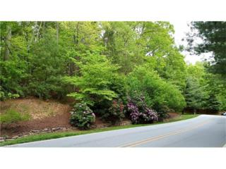 1010 Indian Cave Road #78, Hendersonville, NC 28739 (#3276996) :: Caulder Realty and Land Co.