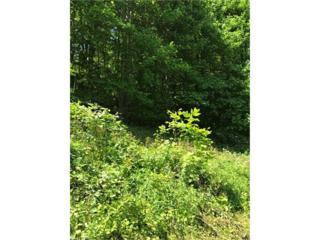 9 Haw View Drive #9, Mars Hill, NC 28754 (#3277439) :: Team Browne - Keller Williams Professionals