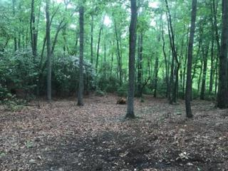 1304 Fawn Meadow Way Lot 85, Arden, NC 28704 (#3278428) :: Exit Mountain Realty