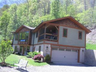 488 Natures Trail, Burnsville, NC 28714 (#3279313) :: Exit Realty Vistas