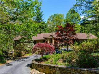 324 Silent Rise Lane, Flat Rock, NC 28731 (#3279416) :: Caulder Realty and Land Co.