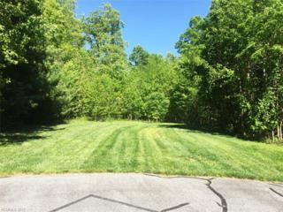308 Cedar Rock Trail #364, Hendersonville, NC 28739 (#3279574) :: Caulder Realty and Land Co.