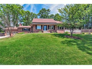213 Monticello Road, Weaverville, NC 28787 (#3279714) :: Exit Realty Vistas