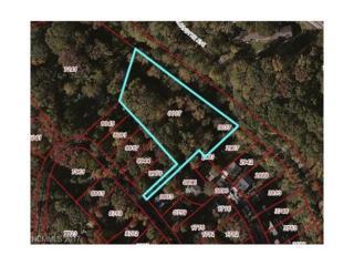 32 Hibriten Drive, Asheville, NC 28801 (#3280382) :: Team Browne - Keller Williams Professionals