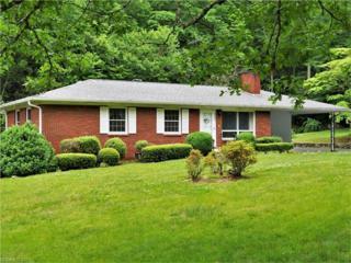 290 Jims Branch Road, Swannanoa, NC 28778 (#3280710) :: Exit Realty Vistas