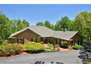 261 Dalhousie Court #47, Flat Rock, NC 28731 (#3281292) :: Caulder Realty and Land Co.