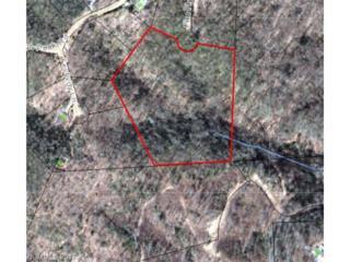 0000 Firefly Lane 64 & 65, Etowah, NC 28792 (#3281431) :: Exit Mountain Realty