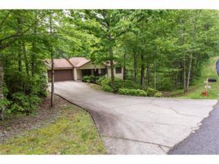 262 Shumont Estates Drive, Lake Lure, NC 28746 (#3281438) :: Caulder Realty and Land Co.