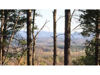 Lot 10 Prospect Point Drive #10, Tryon, NC 28782 (#3281550) :: Caulder Realty and Land Co.