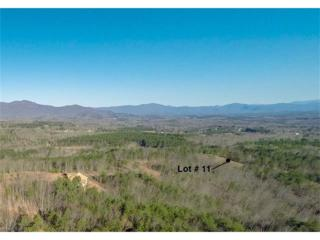 Lot 11 Prospect Point Drive #11, Tryon, NC 28782 (#3281551) :: Caulder Realty and Land Co.