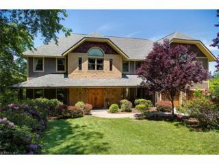 3 Blue Heron Drive, Fletcher, NC 28732 (#3281659) :: Exit Mountain Realty