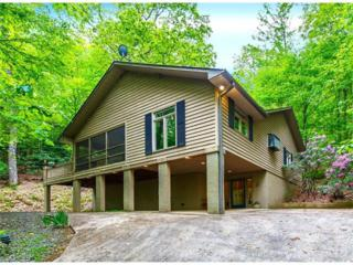 4122 Connestee Trail, Brevard, NC 28712 (#3282407) :: Exit Mountain Realty