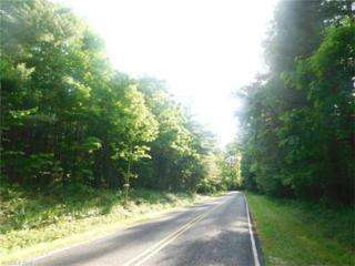 Lot 1 and 2 Pisgah Drive, Hendersonville, NC 28739 (#3282697) :: Exit Mountain Realty