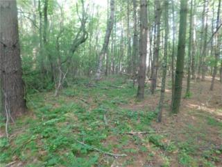 Lot 2 Pisgah Drive, Hendersonville, NC 28739 (#3282714) :: Exit Mountain Realty