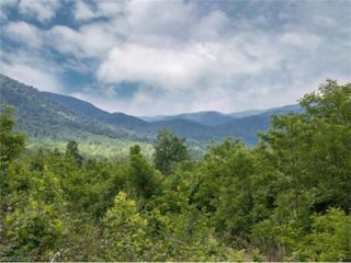 2303 Old Fort Road, Black Mountain, NC 28711 (#3283013) :: Exit Realty Vistas