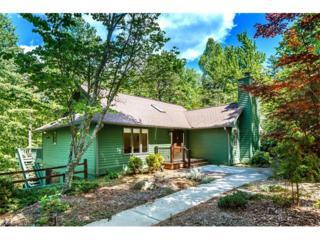 36 Kituhwa Trail, Brevard, NC 28712 (#3283472) :: Exit Mountain Realty