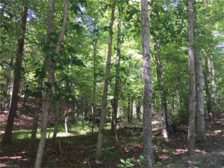 0 E Wilderness Road #133, Lake Lure, NC 28746 (#3283616) :: Caulder Realty and Land Co.