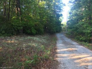 Lot 8 Calhoun Trail, Lake Lure, NC 28746 (#3283655) :: Caulder Realty and Land Co.