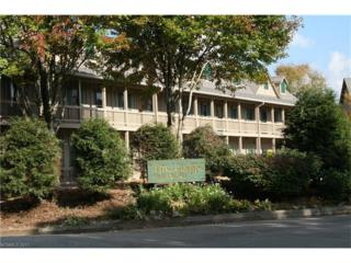 2521 Wolf Laurel Road #205, Mars Hill, NC 28754 (#3283694) :: Team Browne - Keller Williams Professionals