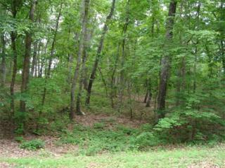 0 Dogwood Court #14, Tryon, NC 28782 (#3283793) :: Caulder Realty and Land Co.