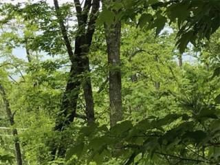 68 Cottage Settings Lane, Black Mountain, NC 28711 (#3284033) :: Exit Realty Vistas