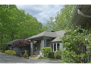 400 Ridge Top Road, Tryon, NC 28782 (#3284139) :: Caulder Realty and Land Co.
