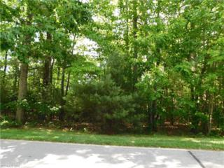 533 Hagen Drive #26, Hendersonville, NC 28739 (#3284142) :: Caulder Realty and Land Co.