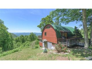 5351 Bearwallow Mountain Road, Hendersonville, NC 28792 (#3284270) :: Exit Realty Vistas