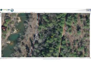 TBD Doves Way Lot 77, Lake Lure, NC 28746 (#3284277) :: Caulder Realty and Land Co.