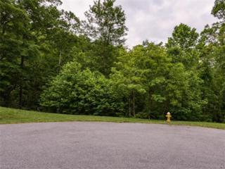 50 Pearly Wickham Drive #1059, Biltmore Lake, NC 28715 (#3284297) :: Team Browne - Keller Williams Professionals