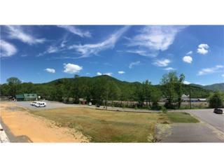 141 S Richardson Boulevard, Black Mountain, NC 28711 (#3284476) :: Exit Realty Vistas