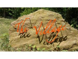 56 Yanasee Trail, Maggie Valley, NC 28751 (#3284561) :: Exit Realty Vistas