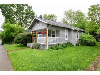 36 S Oaklawn Avenue, Brevard, NC 28712 (#3284622) :: Exit Mountain Realty
