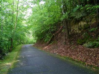 LOT 140 Deerfield Drive, Lake Lure, NC 28746 (#3284671) :: Caulder Realty and Land Co.