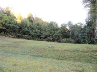 19 Sanctuary Trail Lot 10, Hendersonville, NC 28739 (#3284849) :: Caulder Realty and Land Co.