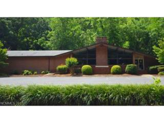 2969 Us Hwy 176 Highway, Tryon, NC 28782 (#3284916) :: Caulder Realty and Land Co.
