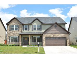 221 Alligator Drive, Fletcher, NC 28732 (#3285189) :: Exit Mountain Realty