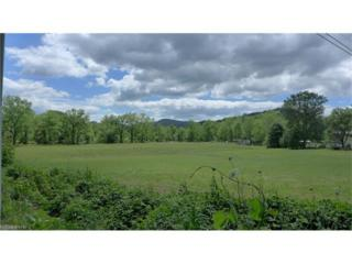 TBD Forest Hill Drive, Brevard, NC 28712 (#3285191) :: Exit Mountain Realty