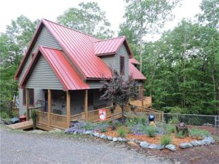 164 Breckenridge Court, Brevard, NC 28712 (#3285226) :: Exit Mountain Realty
