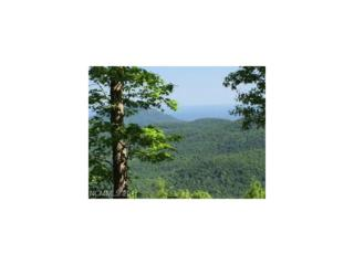 lot 4 High Cliffs Trail, Black Mountain, NC 28711 (#3285233) :: Team Browne - Keller Williams Professionals
