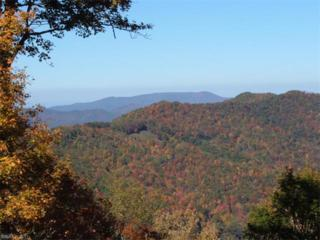 00 Galax Trail, Waynesville, NC 28785 (#3285671) :: Exit Mountain Realty