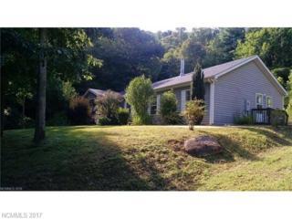 20 Sassafras Valley Road, Swannanoa, NC 28778 (#3285678) :: Exit Realty Vistas