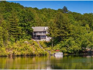 4949 Connestee Trail, Brevard, NC 28712 (#3285712) :: Exit Mountain Realty