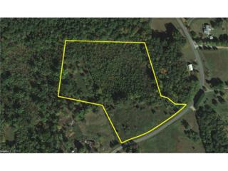 10.929 Ac Moore Road, Tryon, NC 28782 (#3285840) :: Caulder Realty and Land Co.