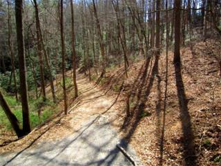 Lot 5 Merrills Cove Road, Asheville, NC 28803 (#3285895) :: Exit Mountain Realty