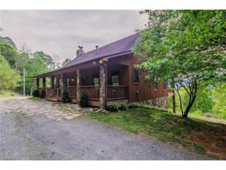 482 Misty Cove Road, Bakersville, NC 28705 (#3285925) :: Exit Realty Vistas